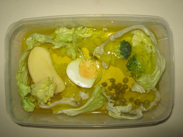 Edible Plant Cell Project Ideas http://asmadrid5.edublogs.org/category/science-questions/